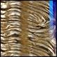 Cornici -  - DG Cornici 8580 oro