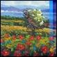 Dipinti ad Olio -  - Campo fiorito