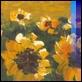 Dipinti ad Olio -  - Campo di girasoli